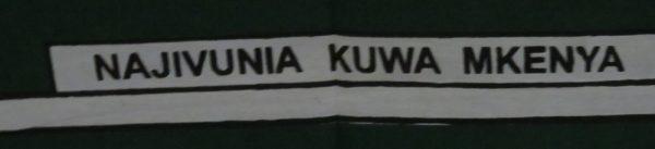 Kajivalnia kuwe Mkenya